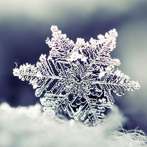 desktop-wallpaper-snowflake-square